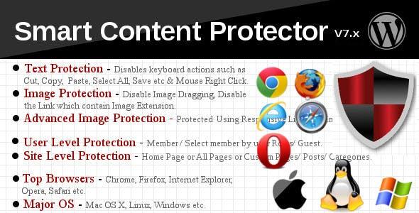 Plugin chống sao chép nội dung bài viết Wordpress 1